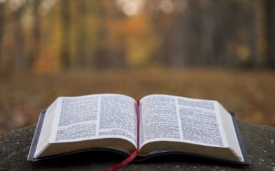 The Wonder of the Scripture, and the Wisdom of the Spirit